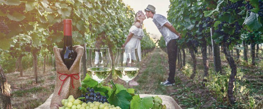Wein- & Genussreisen