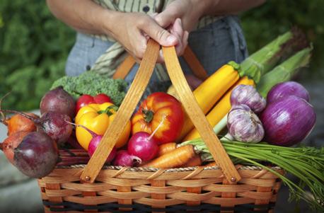 Kulinarische Führungen und Genusstouren
