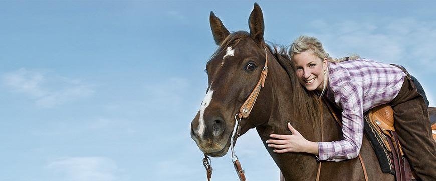 Pferde Erlebnisse