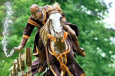 Reitkurse Reiturlaub Pferdemessen und Reitturniere